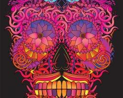 skull mexican fin